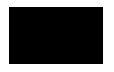 logo orca intervision
